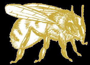 Kuhlmann Biene
